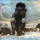 Spectacle : Mammouth toujours ! du 11 au 13 février